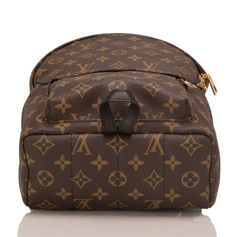 Louis Vuitton Palm Springs Backpack PM   World's Best