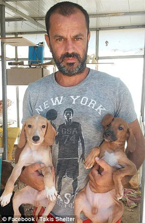 Greek animal lover gives up job to found a dog shelter