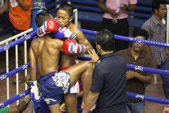 Boys Fighting Stock Images - Download 2,269 Photos