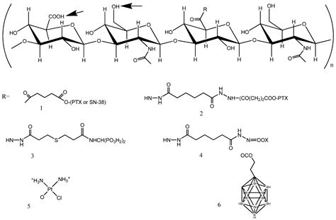 Molecules   Free Full-Text   Hyaluronic Acid Conjugates as