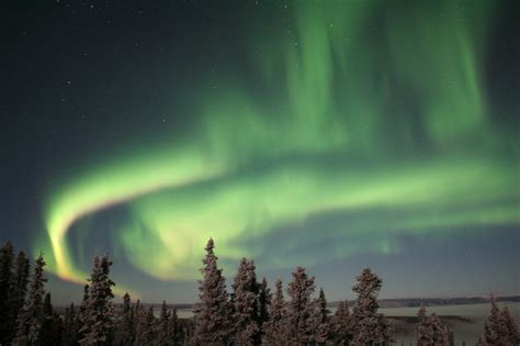 Salmon Berry Tours Northern Lights Excursions   Anchorage