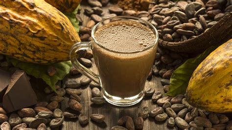 Why flavonoid-rich cocoa could help people with MS battle